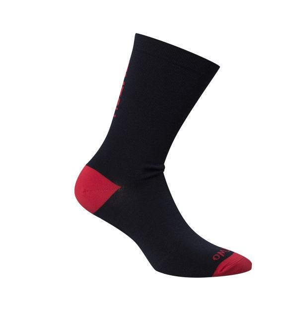 Ashlu Merino Sock